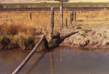 Fence posts perpendicular to canal