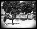 Unidentified jockey atop a horse (1 of 2);
