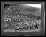 Large herd of sheep grazing on a hillside, herders in foreground;