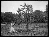 A couple pose in their orchard, the man smoking a cigar (2 of 2);