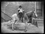 Young boy dressed in period children's clothing with a cowboy hat, riding a pony;