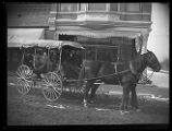 Horse-drawn carriage full of people, parked in front of Compton's Photography Studio on Main...