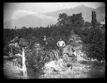 Mrs. H. S. Larsen's peach orchard in Brigham City;