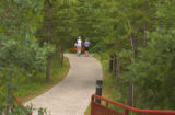 Bollards and walkway through a forested area in Kananaskis, Alberta, Canada;