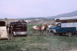 Horses and trailers during the 4th of July Celebration Rodeo (GCCS_CDR027_14)