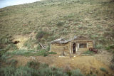 Unidentified log mining cabin, Pine Creek Canyon (GCCS_CTC012_4)