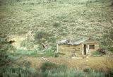 Unidentified log mining cabin, Pine Creek Canyon (GCCS_CTC012_5)