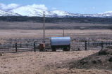 Sheep camp in Simplot corral (GCCS_CTC025_18)