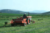 Oren Kimber driving tractor and baling hay on the Kimber Ranch meadow  (GCCS_CTC031_6)