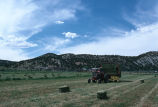 Picking up hay bales with the bale wagon (GCCS_CCF001_11)
