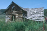 Early century log aspen cabin in the meadow above Nelson Ranch, Junction Valley, [Utah?]...
