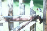 Detail of hand forged hinge on a gate at the Warburton Ranch (GCCS_CHC013_3)