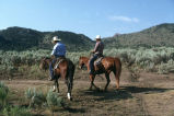 Milton Oman and Barney McWilliams on horseback at Emigrant Canyon to herd cattle down to Moulton,...