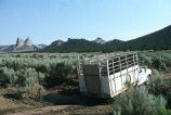 Milton Oman and Barney McWilliams's horse trailer in Emigrant Canyon while they are herding cattle...