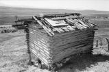Roof and back view of Moroni Tanner cabin (GCCS_BRR25557_19)
