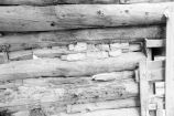 Log wall construction detail of the Phillip Paskett house (GCCS_BRR25558_30)