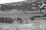 Overview of corrals and outbuildings on the Ross Rytting Ranch (GCCS_BRR25561_15)
