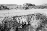 Irrigation water in ditch (GCCS_BCF231196_16_35)