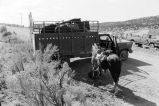 Tom Tanner and friend load horse into truck (GCCS_BCF50409-1_3)