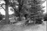 Handmade wooden benches in cemetery originally used in old, log church (GCCS_BCE25572_7)