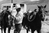 Milt Oman unsaddling and loading horses after moving cattle (GCCS_BHC25555_6)