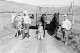 Max Tanner, Doug Tanner, and son Thomas Tanner prepare to gather cattle in Cotton Thomas Basin,...