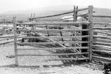 Gate construction detail of the pole fence corral at the Frost Ranch (GCCS_BTC25503_4)