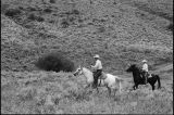 Doug and Max Tanner driving cattle  (GCCS_BTC25589_14)