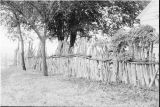 Stockade fencing on the Reese Warburton ranch (GCCS_BTC25591_8)