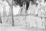 Stockade fencing on the Reese Warburton ranch (GCCS_BTC25591_9)