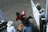 Saddle bronc comes out of the chute (GCCS_CCF017_13)