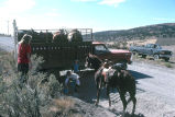 Tom Tanner and friend load horse into a truck (GCCS_CCF026_9)