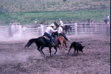 Team roping event during the 4th of July rodeo (GCCS_CCE017_10)