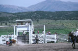 Bull riding event in the 4th of July rodeo (GCCS_CCE017_12)