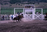 Bronc riding event in the 4th of July rodeo (GCCS_CCE017_15)