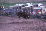 Bronc riding event in the 4th of July rodeo (GCCS_CCE017_16)