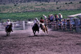 Bronc riding event in the 4th of July rodeo (GCCS_CCE017_18)