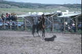 Calf roping event in the 4th of July rodeo (GCCS_CCE017_19)