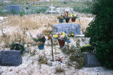 View of cemetery (GCCS_CCE005_10)