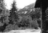 Right Hand Fork, view looking east from Girl Scout Lodge, Logan Canyon, Utah, 1940s;
