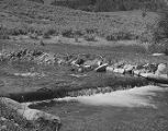 View of a stream in Temple Fork taken by the United States Forest Service, 1960;