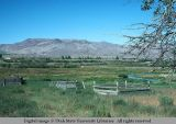 Feed racks, Pahsimeroi River Valley, Idaho, 1977