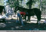 Horseshoeing, Colorado, 1973