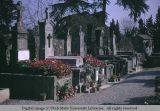 Gravemarkers, Carcassonne, France, 1969
