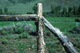 Barbed wire and post fence, east of Oakley, Utah, 1977