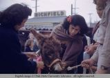 Burro on its way to Blessing of the Animals, Los Angeles, California, 1953