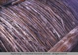 Willow under-support for dirt roof, Moab, Utah, 1953
