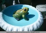 Frog garden figurine, Los Angeles, California, 1966