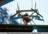 Wall-mounted antlers, Malad, Idaho, 1978