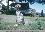Natural wood lawn ornament, Eatonville, Washington, 1964